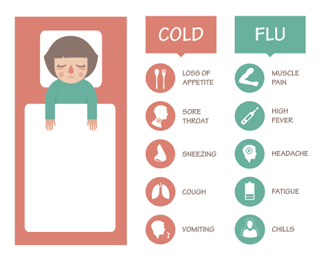 is-it-a-cold-or-the-flu-infographic